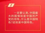 习近平总书记论坚持和完善党的领导